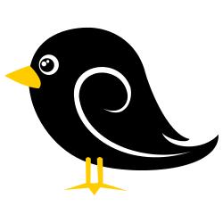 Black Baby Bird