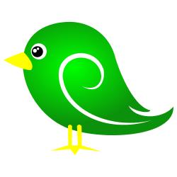 Green Baby Bird