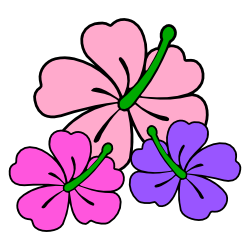 Pastel Pink Hibiscus Trio